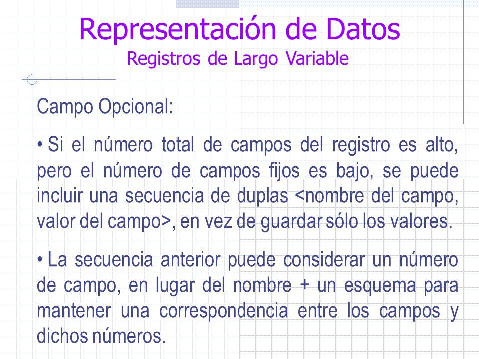 Representación de Datos Registros de Largo Variable Campo Opcional: Si el número total de campos del registro es alto, pero el número de campos fijos es bajo, se puede incluir una secuencia de duplas, en vez de guardar sólo los valores.