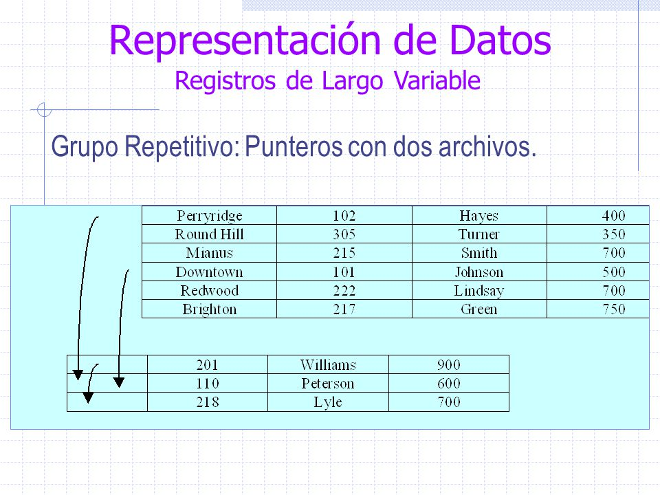 Representación de Datos Registros de Largo Variable Grupo Repetitivo: Punteros con dos archivos.