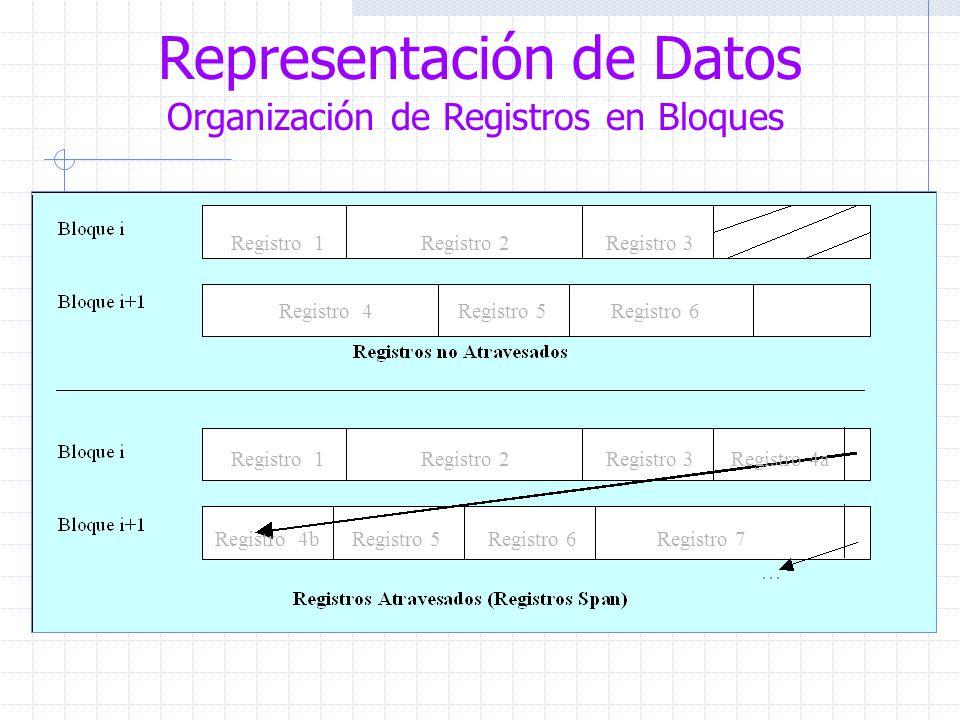 Representación de Datos Organización de Registros en Bloques Registro 1 Registro 2 Registro 3 Registro 4 Registro 5 Registro 6 Registro 1 Registro 2 Registro 3 Registro 4a Registro 4b Registro 5 Registro 6 Registro 7