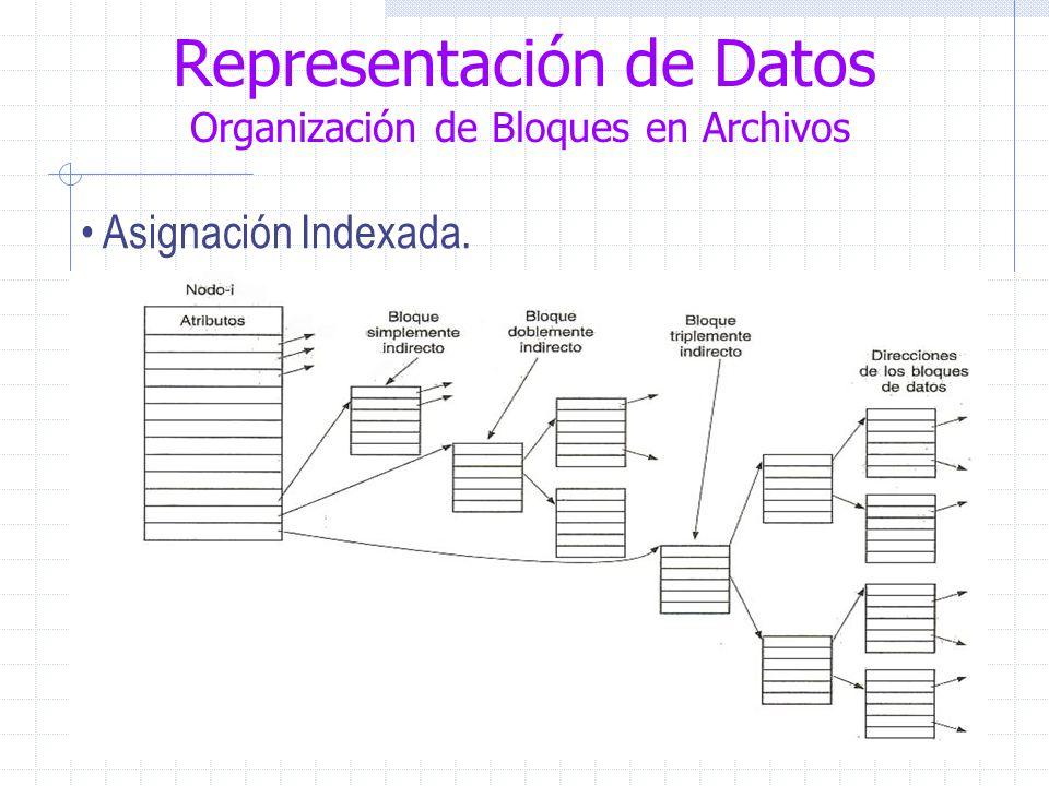 Representación de Datos Organización de Bloques en Archivos Asignación Indexada.