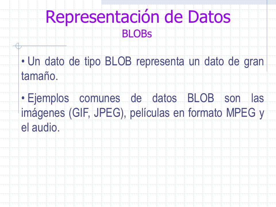 Representación de Datos BLOBs Un dato de tipo BLOB representa un dato de gran tamaño.
