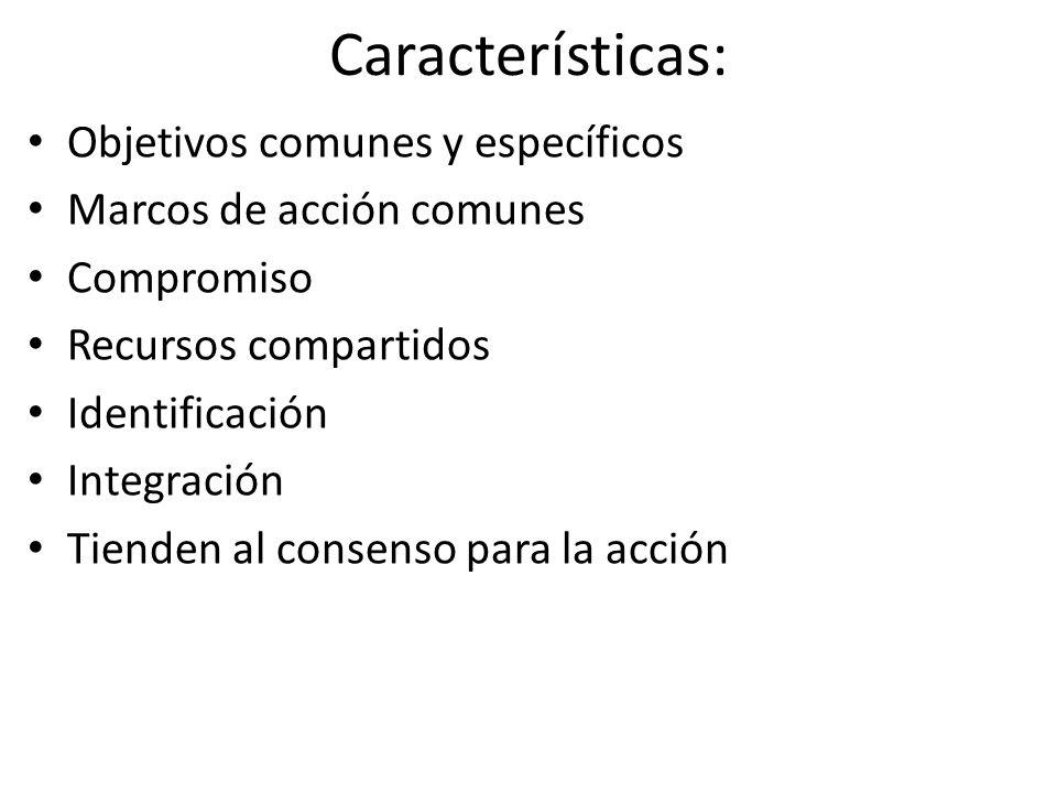 Características: Objetivos comunes y específicos Marcos de acción comunes Compromiso Recursos compartidos Identificación Integración Tienden al consenso para la acción