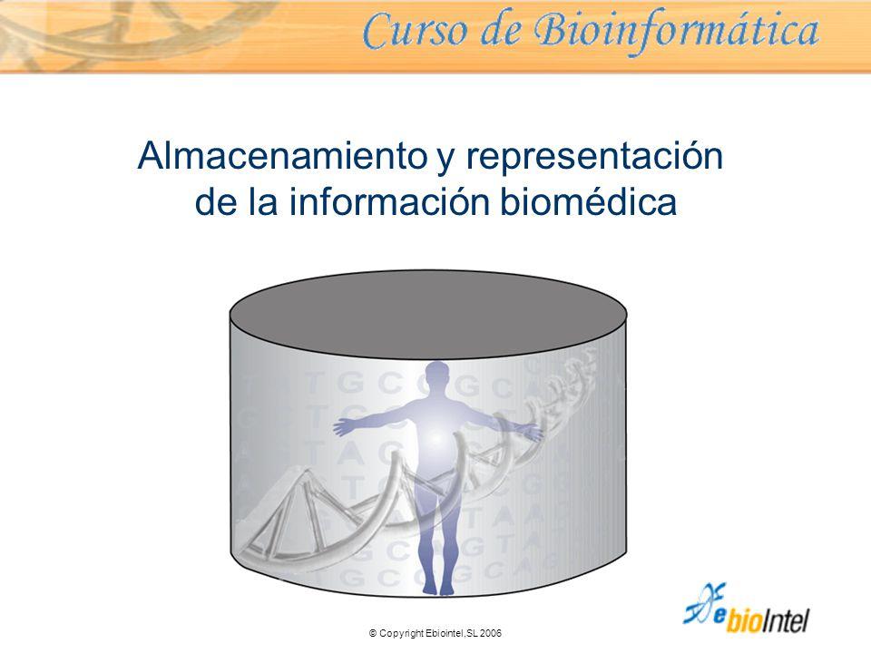 © Copyright Ebiointel,SL 2006 Almacenamiento y representación de la información biomédica