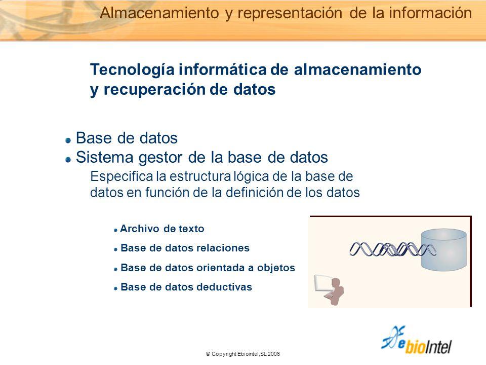 © Copyright Ebiointel,SL 2006 Tecnología informática de almacenamiento y recuperación de datos Base de datos Sistema gestor de la base de datos Archivo de texto Base de datos relaciones Base de datos orientada a objetos Base de datos deductivas Especifica la estructura lógica de la base de datos en función de la definición de los datos Almacenamiento y representación de la información