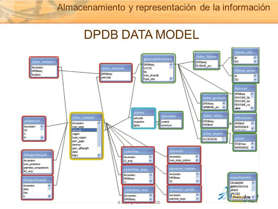© Copyright Ebiointel,SL 2006 Almacenamiento y representación de la información DPDB DATA MODEL