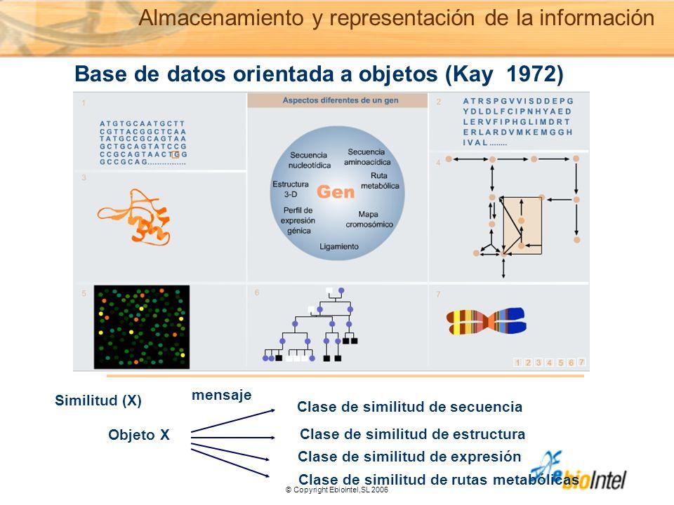 © Copyright Ebiointel,SL 2006 Base de datos orientada a objetos (Kay 1972) Similitud (X) Objeto X mensaje Clase de similitud de secuencia Clase de similitud de estructura Clase de similitud de expresión Clase de similitud de rutas metabólicas Almacenamiento y representación de la información