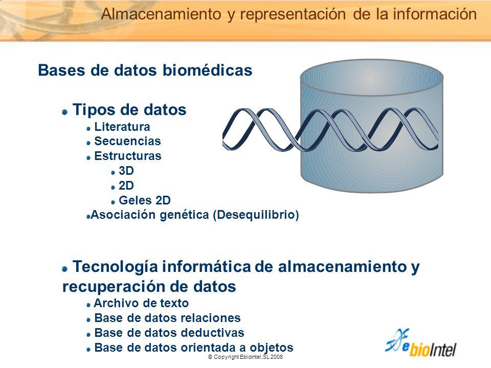 © Copyright Ebiointel,SL 2006 Bases de datos biomédicas Tipos de datos Literatura Secuencias Estructuras 3D 2D Geles 2D Asociación genética (Desequilibrio) Tecnología informática de almacenamiento y recuperación de datos Archivo de texto Base de datos relaciones Base de datos deductivas Base de datos orientada a objetos Almacenamiento y representación de la información