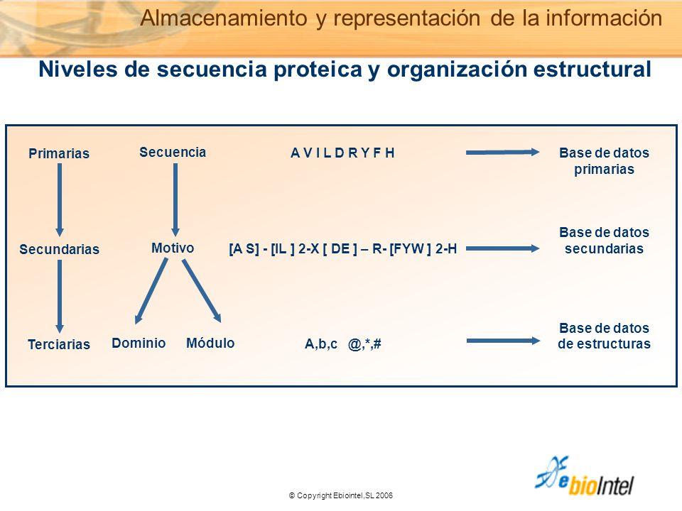 © Copyright Ebiointel,SL 2006 Primarias Secundarias Terciarias Secuencia Motivo Dominio Módulo A V I L D R Y F H [A S] - [IL ] 2-X [ DE ] – R- [FYW ] 2-H A,b,c @,*,# Base de datos primarias Base de datos secundarias Base de datos de estructuras Niveles de secuencia proteica y organización estructural Almacenamiento y representación de la información