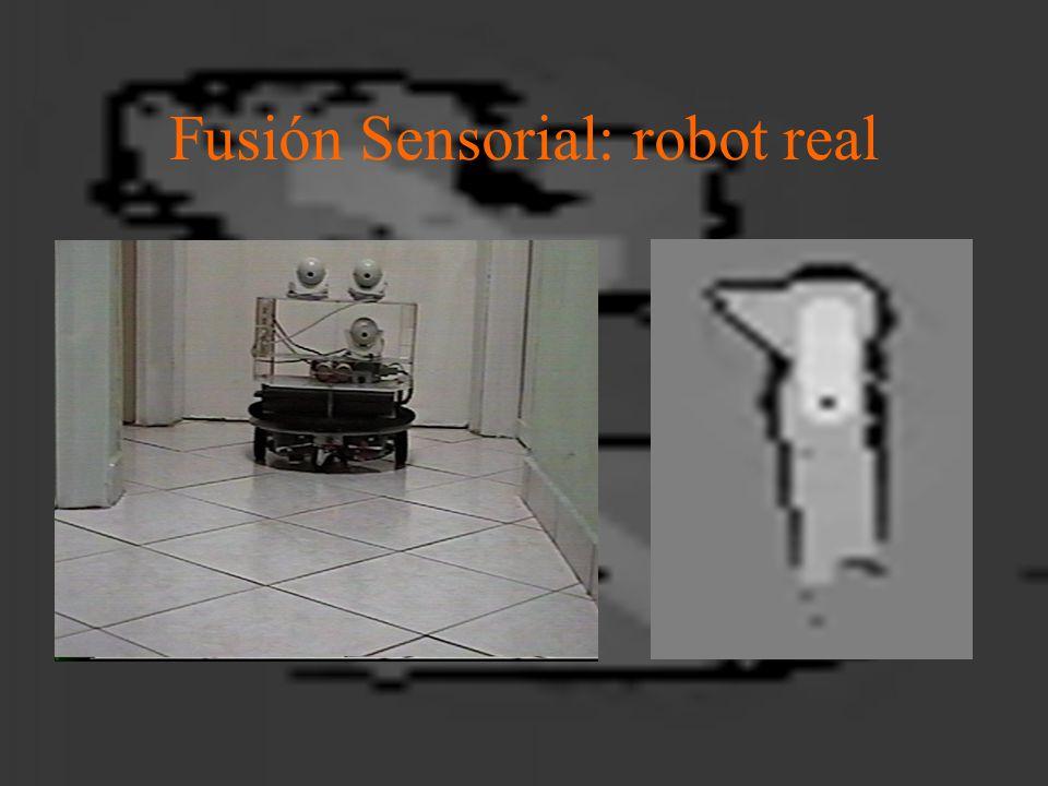 Fusión Sensorial: robot real