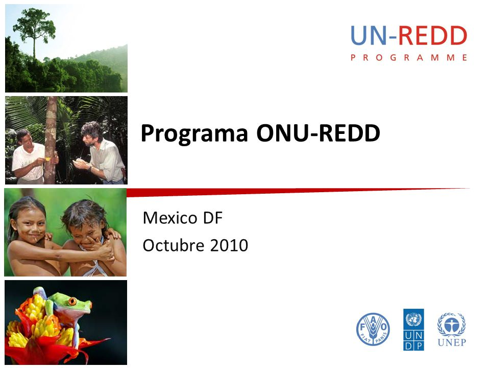 Programa ONU-REDD Mexico DF Octubre 2010