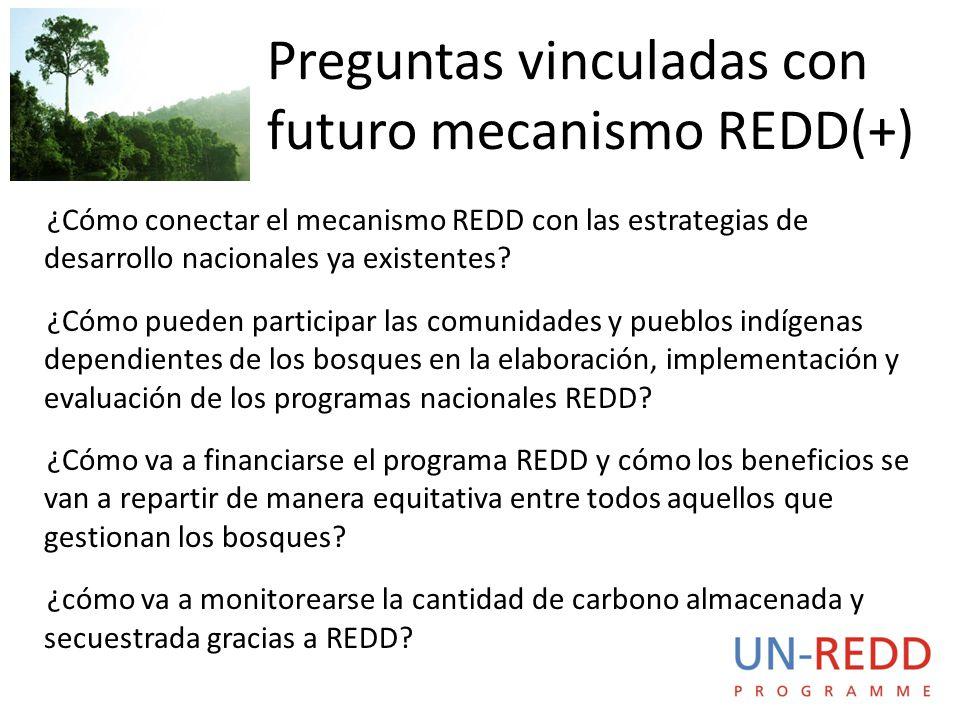 ¿Cómo conectar el mecanismo REDD con las estrategias de desarrollo nacionales ya existentes.