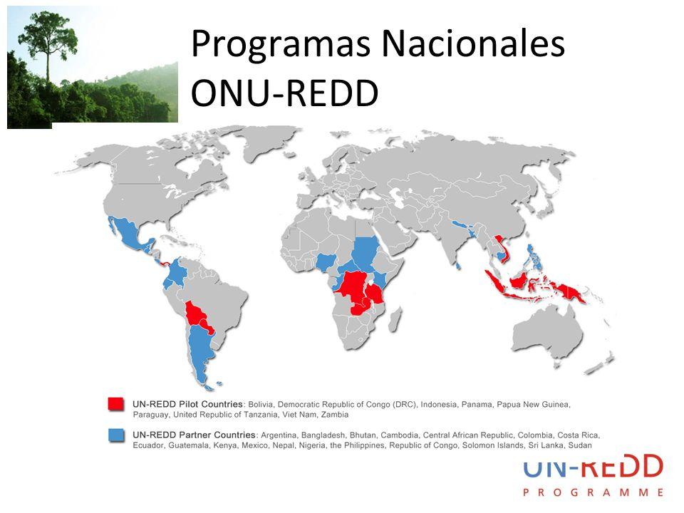 Programas Nacionales ONU-REDD