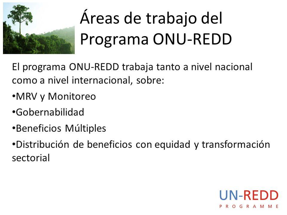 El programa ONU-REDD trabaja tanto a nivel nacional como a nivel internacional, sobre: MRV y Monitoreo Gobernabilidad Beneficios Múltiples Distribución de beneficios con equidad y transformación sectorial Áreas de trabajo del Programa ONU-REDD