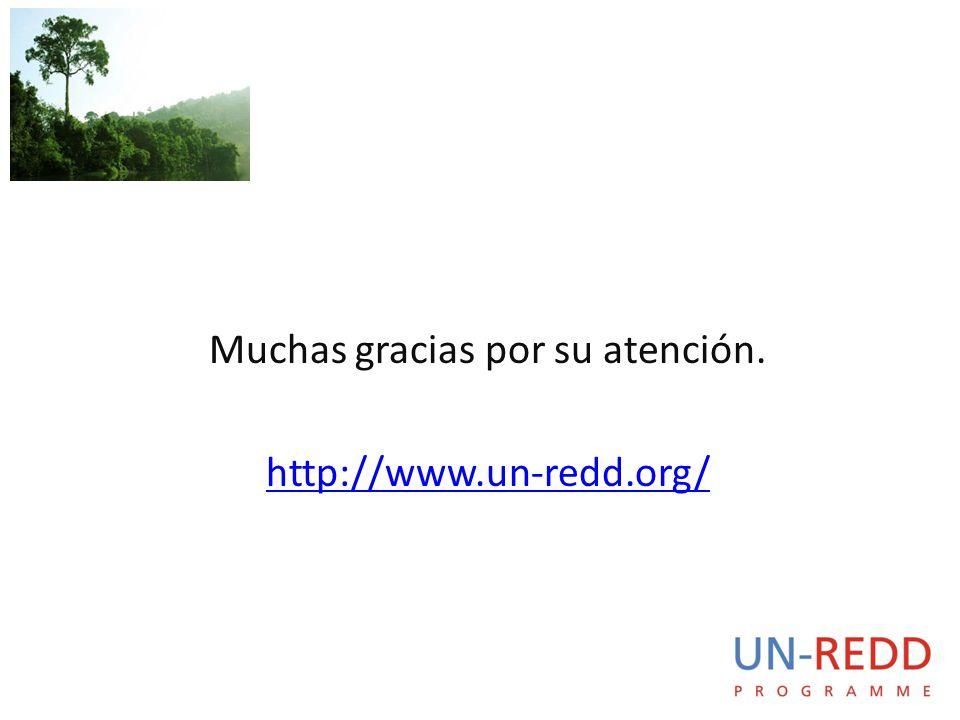 Muchas gracias por su atención. http://www.un-redd.org/