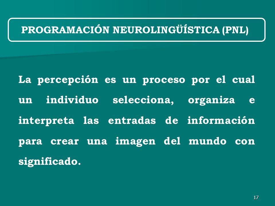 17 La percepción es un proceso por el cual un individuo selecciona, organiza e interpreta las entradas de información para crear una imagen del mundo con significado.
