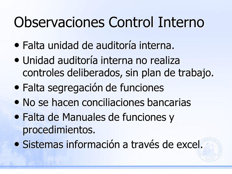 Observaciones Control Interno Falta unidad de auditoría interna.