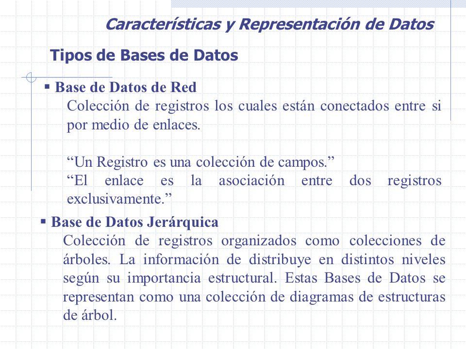 Tipos de Bases de Datos  Base de Datos de Red Colección de registros los cuales están conectados entre si por medio de enlaces.