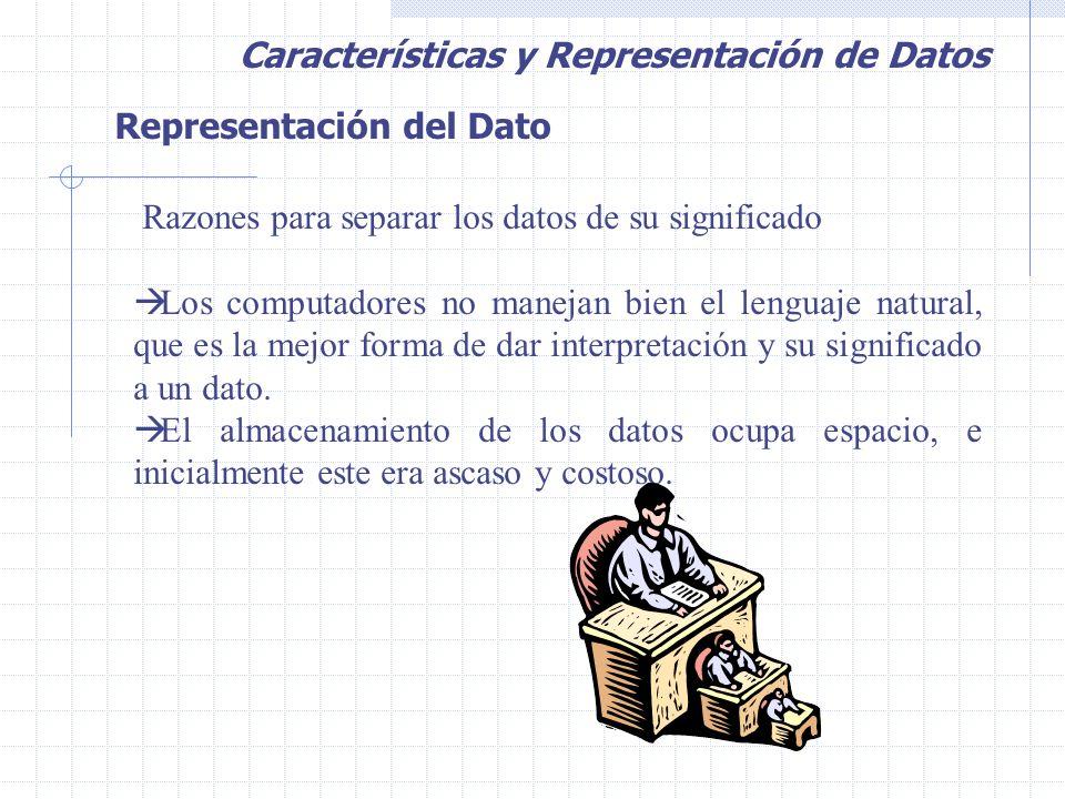 Representación del Dato Razones para separar los datos de su significado  Los computadores no manejan bien el lenguaje natural, que es la mejor forma de dar interpretación y su significado a un dato.