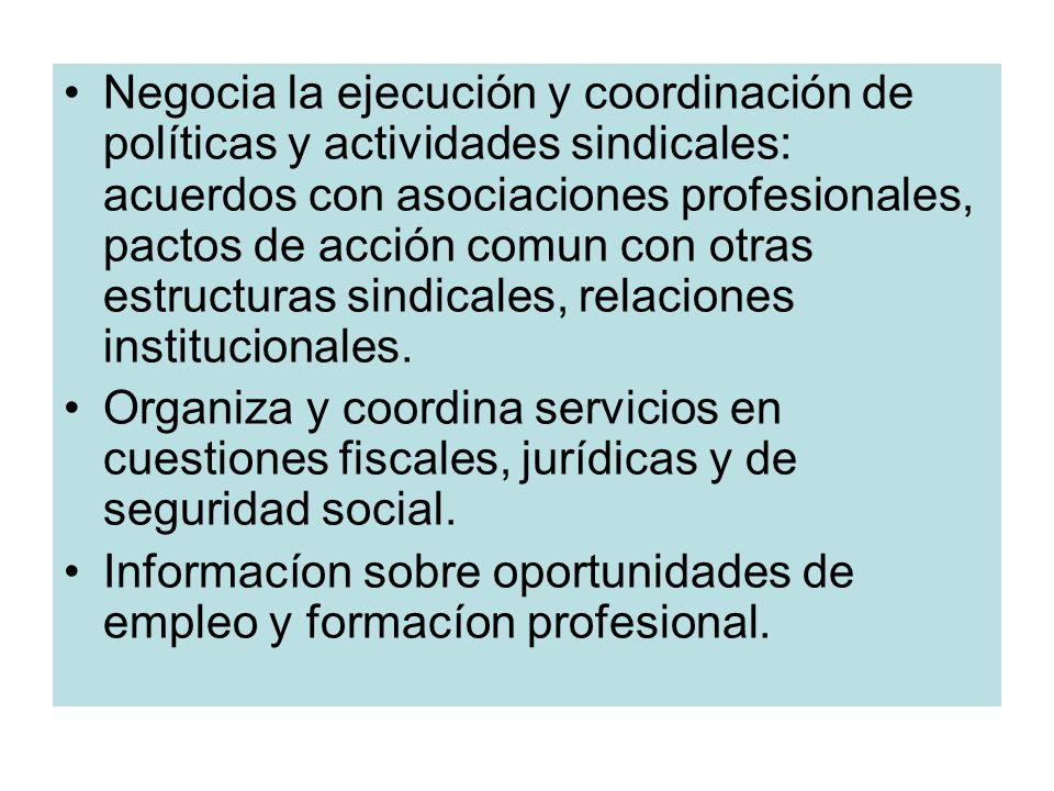 Negocia la ejecución y coordinación de políticas y actividades sindicales: acuerdos con asociaciones profesionales, pactos de acción comun con otras estructuras sindicales, relaciones institucionales.