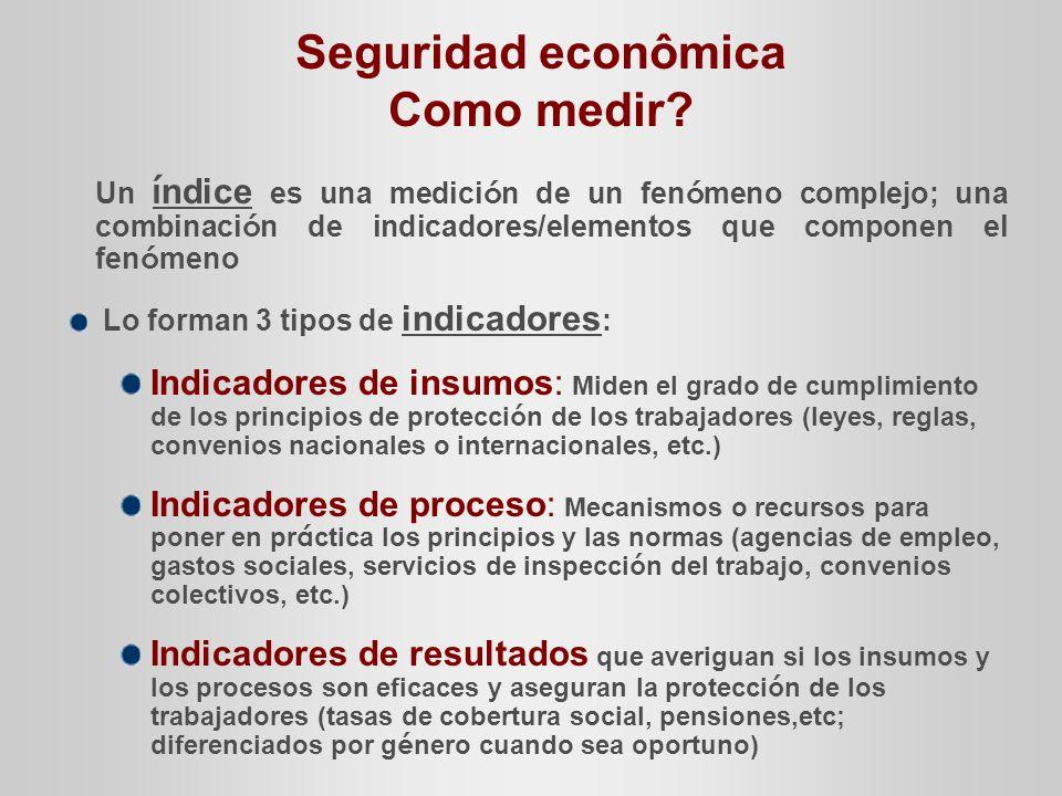 Seguridad econômica Como medir.