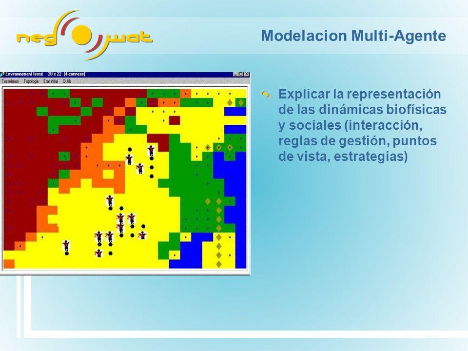 Modelacion Multi-Agente Explicar la representación de las dinámicas biofísicas y sociales (interacción, reglas de gestión, puntos de vista, estrategias)
