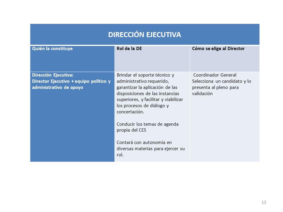 12 COORDINADOR GENERAL PERFILQUIÉN ELIGEPERÍODO DE FUNCIONES Funcionario público de alto nivel, rango ministerial, vinculado al diseño y ejecución de políticas públicas económicas y sociales.