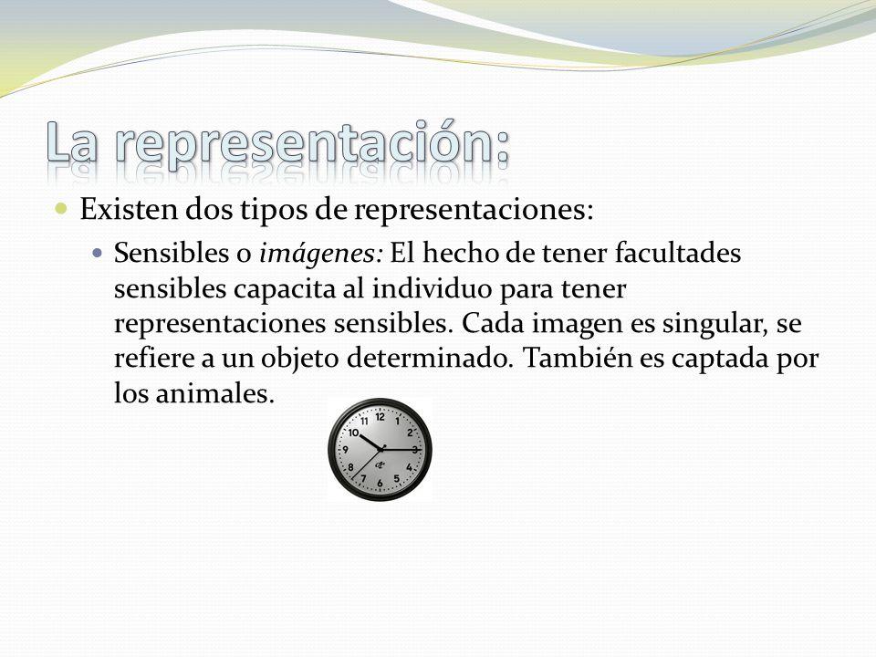 Existen dos tipos de representaciones: Sensibles o imágenes: El hecho de tener facultades sensibles capacita al individuo para tener representaciones sensibles.