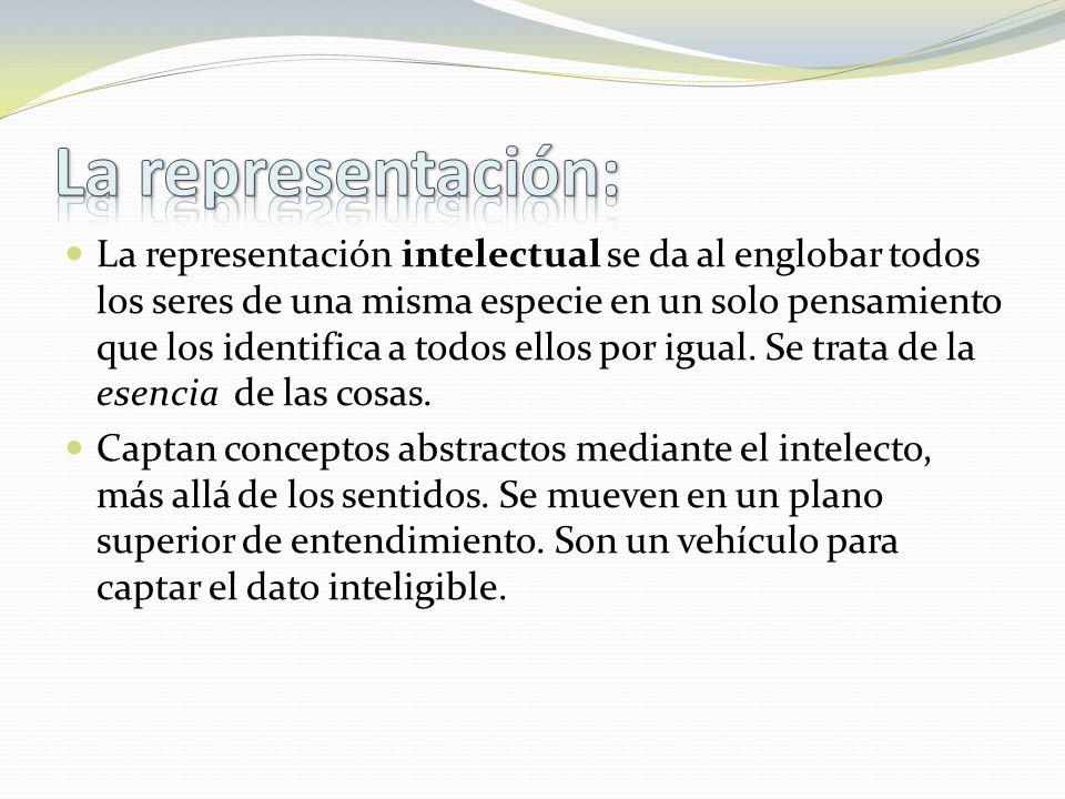 La representación intelectual se da al englobar todos los seres de una misma especie en un solo pensamiento que los identifica a todos ellos por igual.