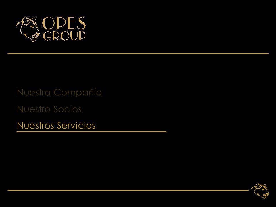 12 Nuestra Compañía Nuestro Socios Nuestros Servicios