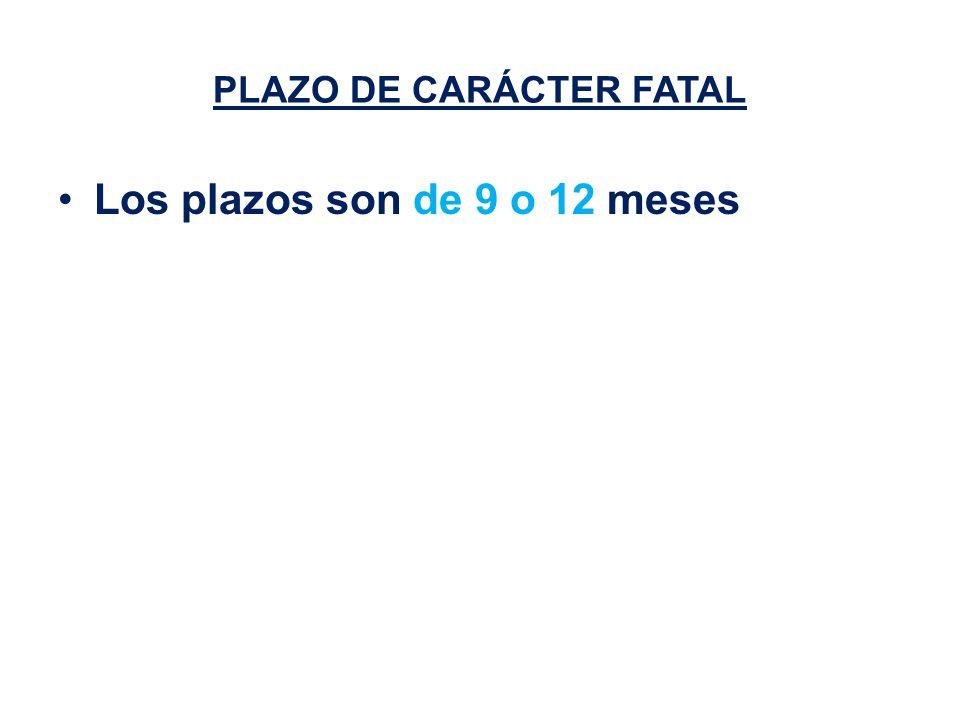PLAZO DE CARÁCTER FATAL Los plazos son de 9 o 12 meses