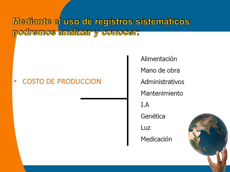 29 COSTO DE PRODUCCION Alimentación Mano de obra Administrativos Mantenimiento I.A Genética Luz Medicación