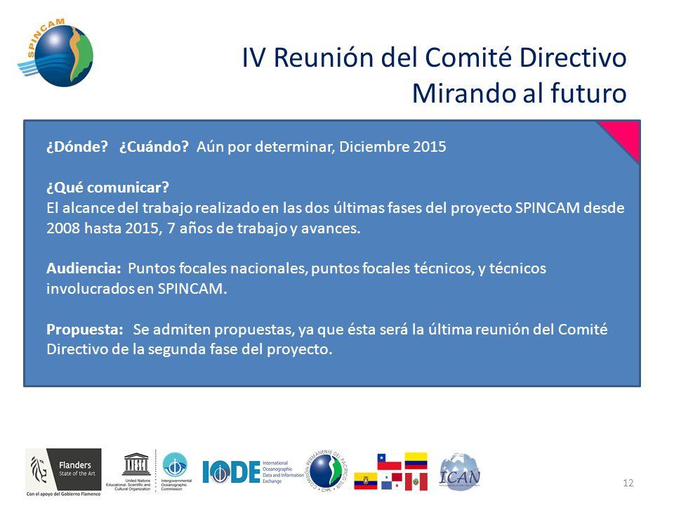 IV Reunión del Comité Directivo Mirando al futuro 12 ¿Dónde.