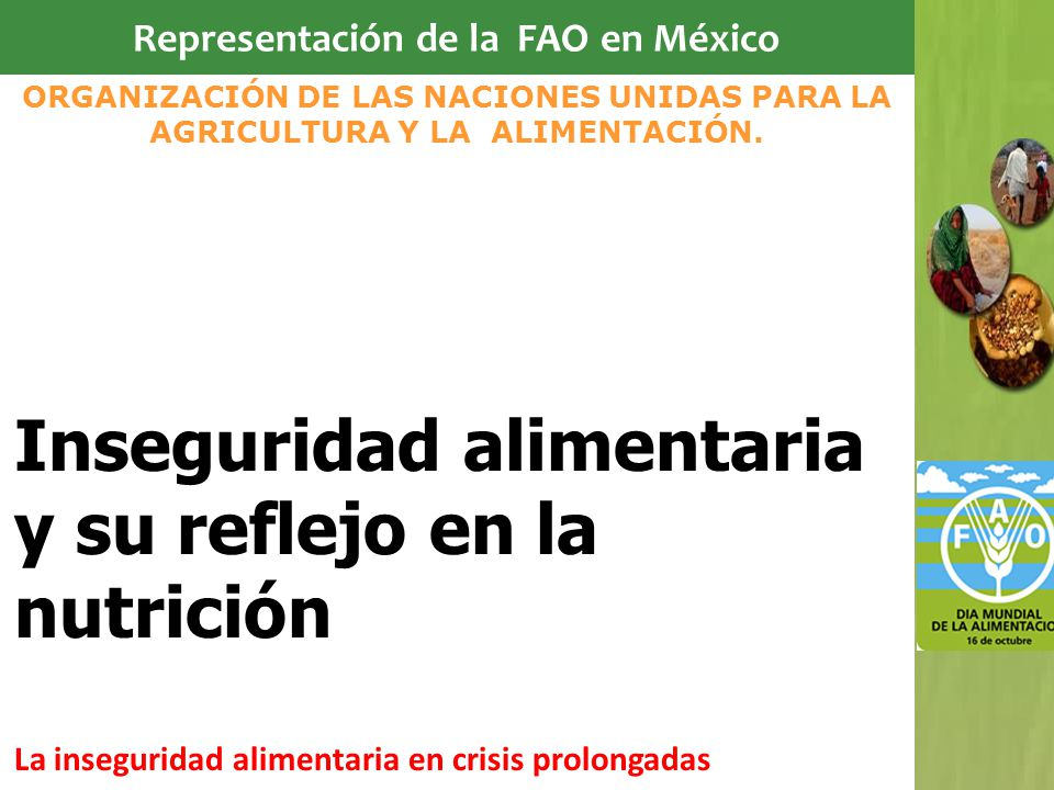 Representación de la FAO en México Inseguridad alimentaria y su reflejo en la nutrición La inseguridad alimentaria en crisis prolongadas ORGANIZACIÓN DE LAS NACIONES UNIDAS PARA LA AGRICULTURA Y LA ALIMENTACIÓN.