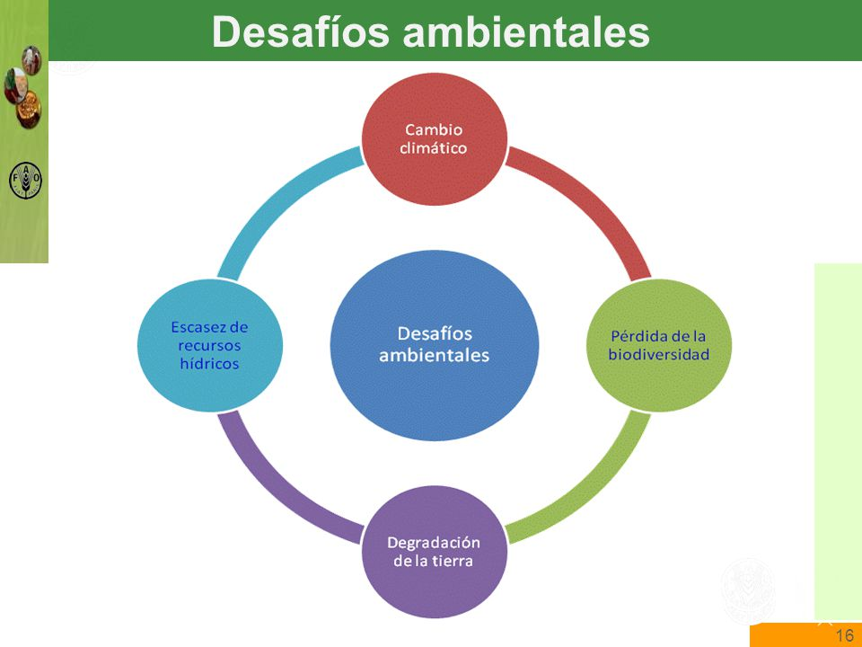 16 The State of Food Insecurity in the World Food and Agriculture Organization of the United Nations The State of Food Insecurity in the World Desafíos ambientales