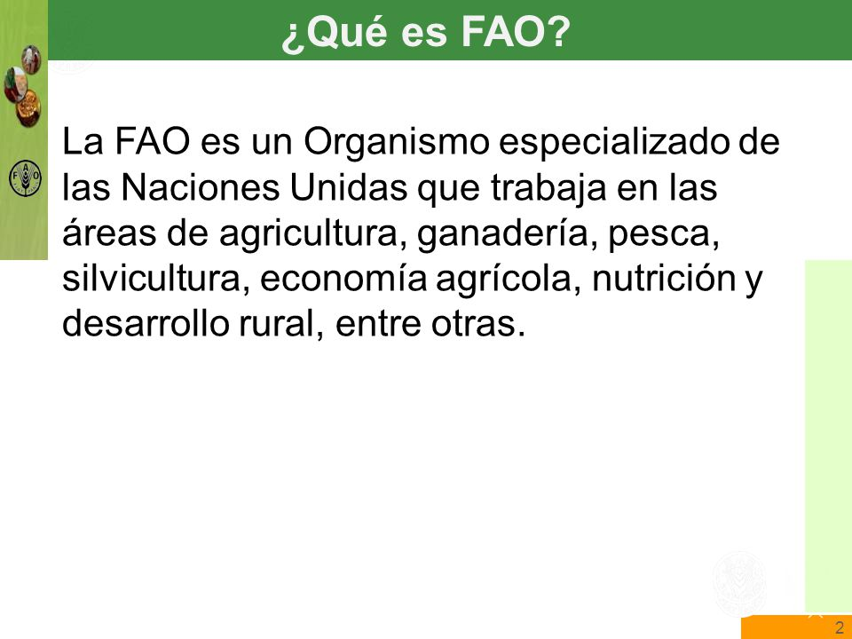 2 The State of Food Insecurity in the World Food and Agriculture Organization of the United Nations The State of Food Insecurity in the World ¿Qué es FAO.