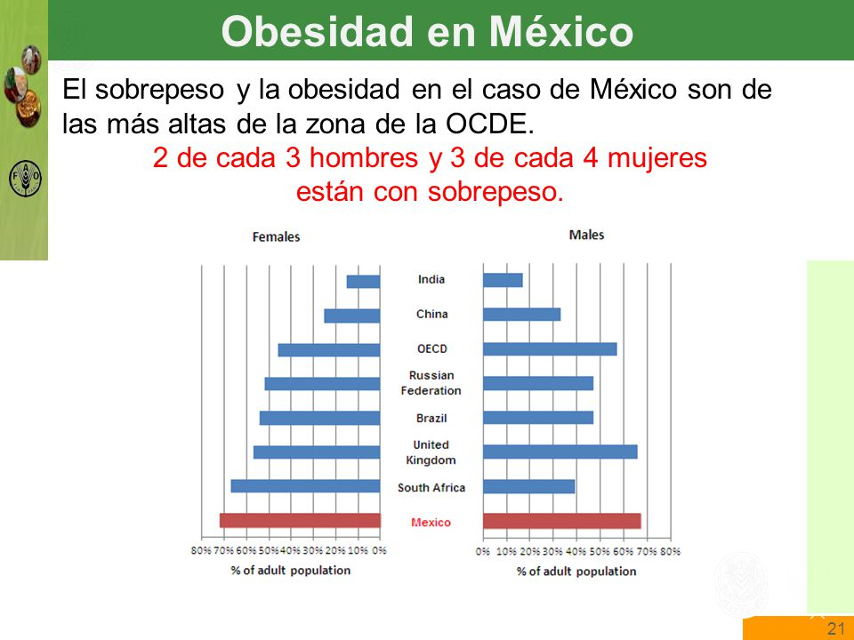21 The State of Food Insecurity in the World Food and Agriculture Organization of the United Nations The State of Food Insecurity in the World El sobrepeso y la obesidad en el caso de México son de las más altas de la zona de la OCDE.