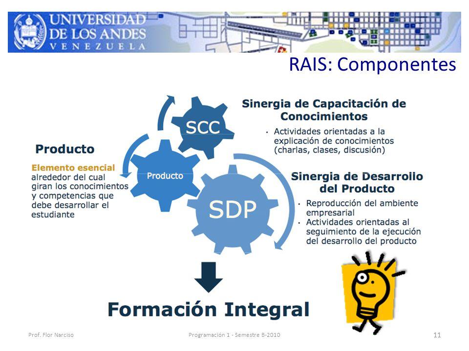 RAIS: Componentes Prof. Flor NarcisoProgramación 1 - Semestre B-2010 11