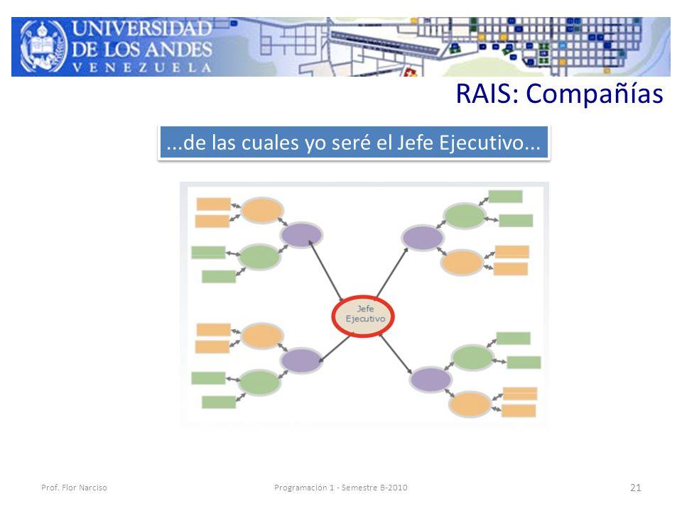 RAIS: Compañías Prof.