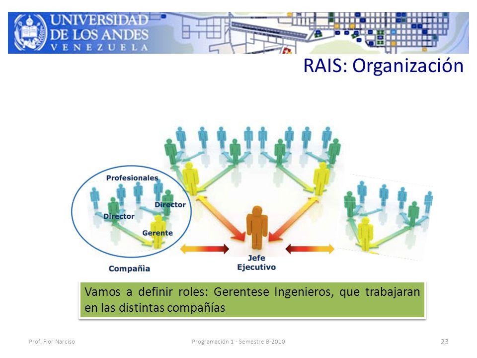 RAIS: Organización Prof.