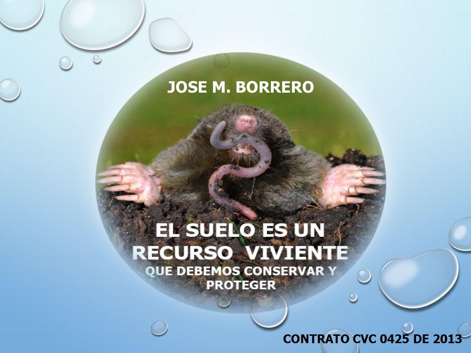 JOSE M. BORRERO CONTRATO CVC 0425 DE 2013