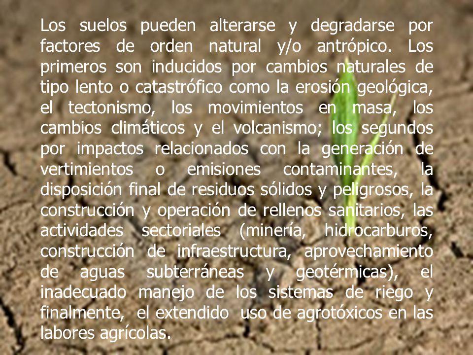 Los suelos pueden alterarse y degradarse por factores de orden natural y/o antrópico.