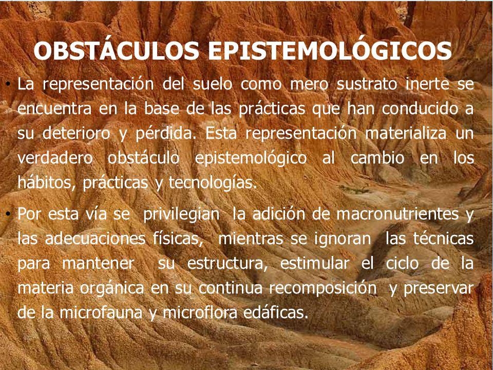 OBSTÁCULOS EPISTEMOLÓGICOS La representación del suelo como mero sustrato inerte se encuentra en la base de las prácticas que han conducido a su deterioro y pérdida.