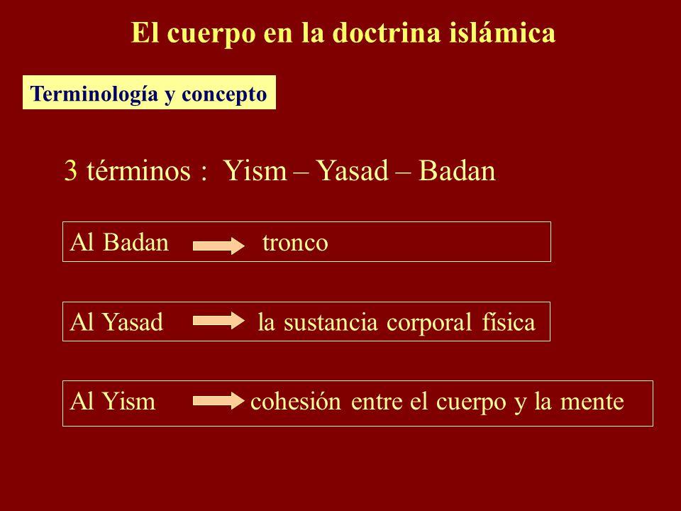 Al Yism cohesión entre el cuerpo y la mente El cuerpo en la doctrina islámica Terminología y concepto 3 términos : Yism – Yasad – Badan Al Badan troncoAl Yasad la sustancia corporal física
