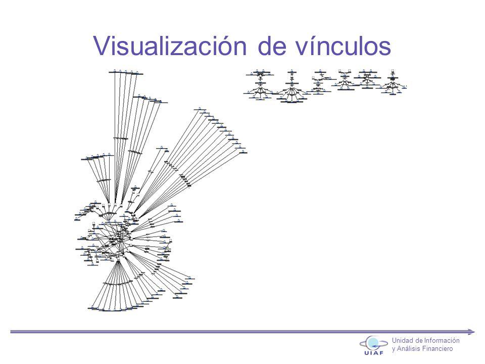 Visualización de vínculos Unidad de Información y Análisis Financiero