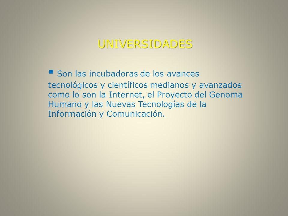 UNIVERSIDADES  Son las incubadoras de los avances tecnológicos y científicos medianos y avanzados como lo son la Internet, el Proyecto del Genoma Humano y las Nuevas Tecnologías de la Información y Comunicación.