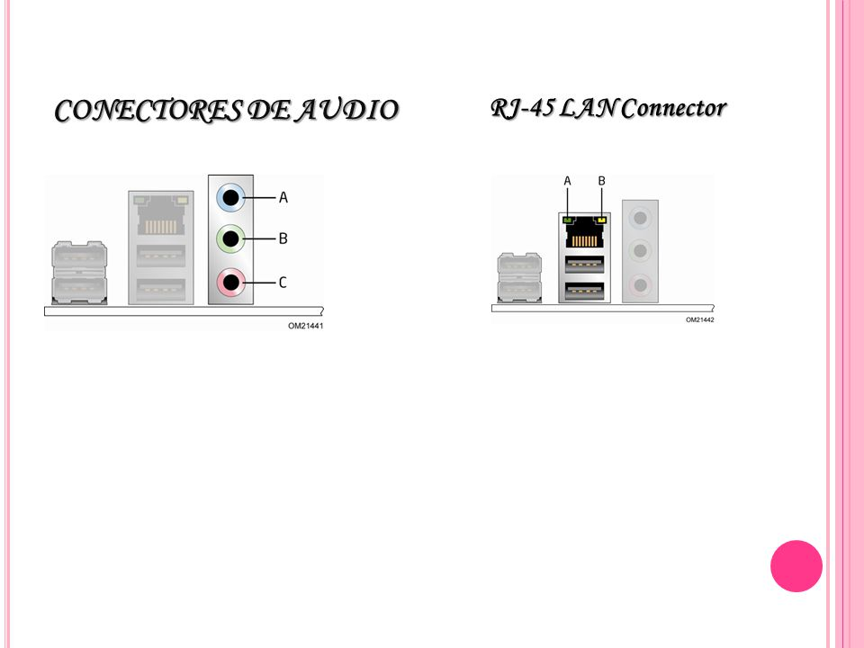 CONECTORES DE AUDIO RJ-45 LAN Connector