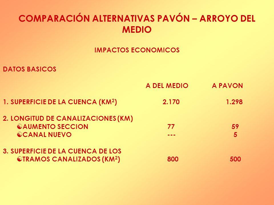 COMPARACIÓN ALTERNATIVAS PAVÓN – ARROYO DEL MEDIO IMPACTOS ECONOMICOS DATOS BASICOS A DEL MEDIO A PAVON 1.
