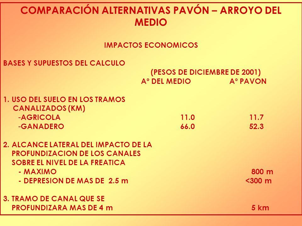 COMPARACIÓN ALTERNATIVAS PAVÓN – ARROYO DEL MEDIO IMPACTOS ECONOMICOS BASES Y SUPUESTOS DEL CALCULO (PESOS DE DICIEMBRE DE 2001) Aº DEL MEDIOAº PAVON 1.