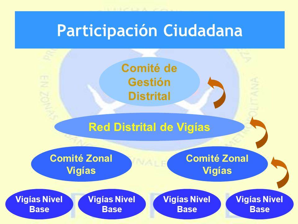 Participación Ciudadana Comité de Gestión Distrital Red Distrital de Vigías Comité Zonal Vigías Vigías Nivel Base