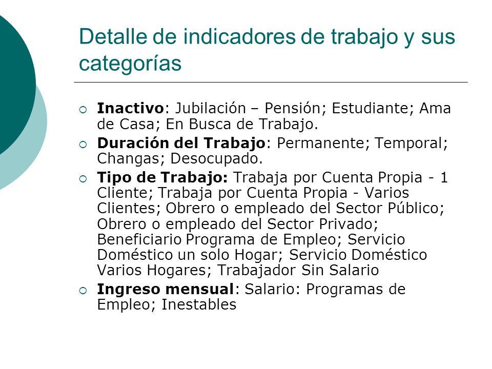 Detalle de indicadores de trabajo y sus categorías  Inactivo: Jubilación – Pensión; Estudiante; Ama de Casa; En Busca de Trabajo.